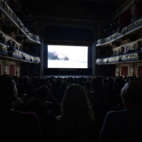 Touch Me Not, In Focus, National Theatre, 24th Sarajevo Film Festival, 2018 (C) Obala Art Centar