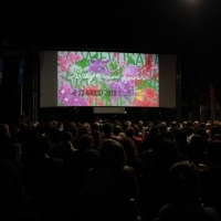Screening of The Son, Open Air Cinema at Safet Zajko Center, 25th Sarajevo Film Festival, 2019 (C) Obala Art Centar